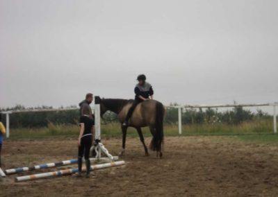 oboz-konie-2011-0089