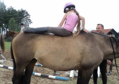 oboz-konie-2011-0091