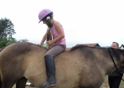 oboz-konie-2011-0092