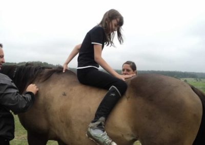 oboz-konie-2011-0093