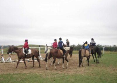 oboz-konie-2011-0096