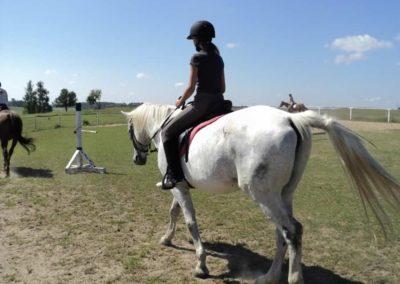 oboz-konie-2011-0098