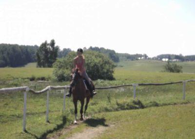 oboz-konie-2011-0099