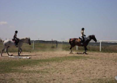 oboz-konie-2011-0101