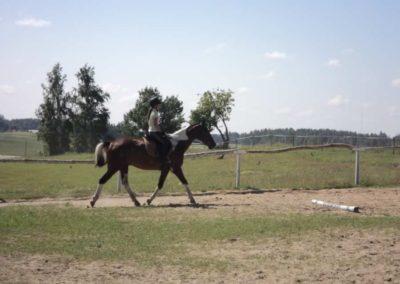 oboz-konie-2011-0105