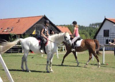 oboz-konie-2011-0107