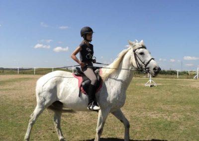 oboz-konie-2011-0113