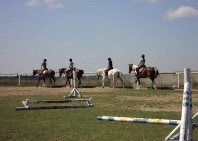 oboz-konie-2011-0115