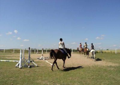 oboz-konie-2011-0116