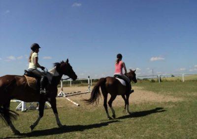 oboz-konie-2011-0117