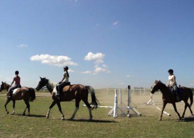 oboz-konie-2011-0120