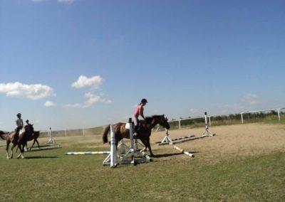 oboz-konie-2011-0121