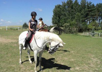 oboz-konie-2011-0122