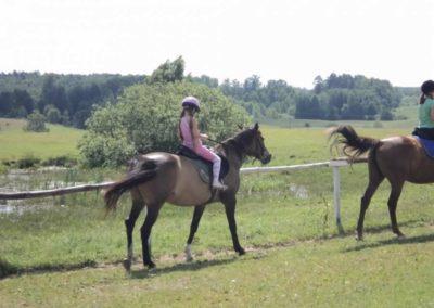 oboz-konie-2011-0125
