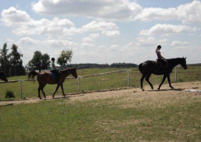 oboz-konie-2011-0126