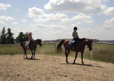 oboz-konie-2011-0128