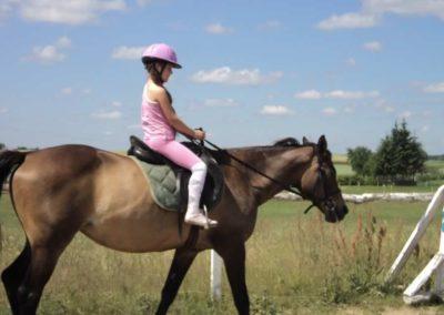 oboz-konie-2011-0130