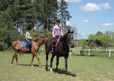 oboz-konie-2011-0131