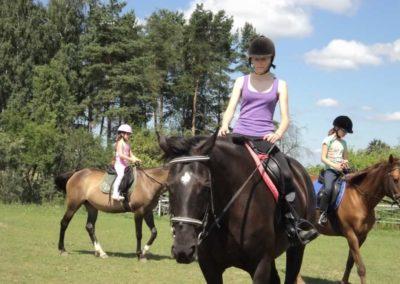oboz-konie-2011-0132