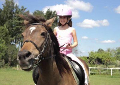 oboz-konie-2011-0134