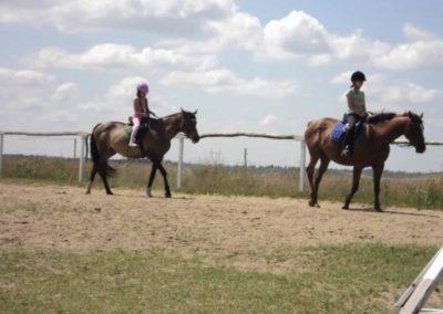 oboz-konie-2011-0135