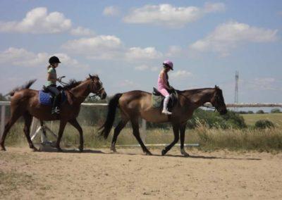 oboz-konie-2011-0141