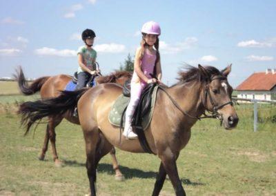 oboz-konie-2011-0142