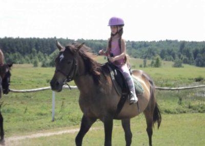 oboz-konie-2011-0146