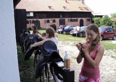 oboz-konie-2011-0149