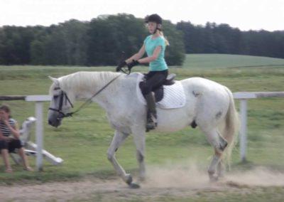 oboz-konie-2011-0152