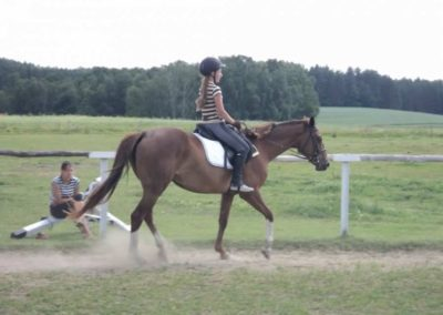 oboz-konie-2011-0153