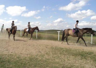 oboz-konie-2011-0162