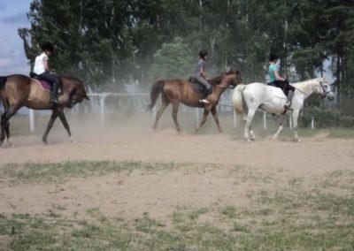 oboz-konie-2011-0168