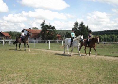 oboz-konie-2011-0169