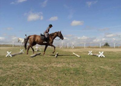 oboz-konie-2011-0173