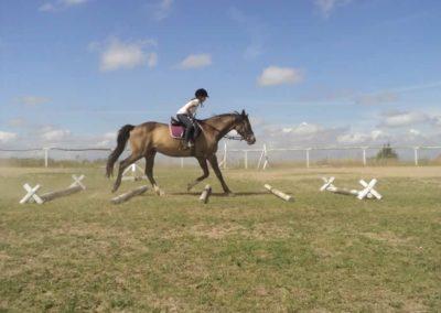 oboz-konie-2011-0174