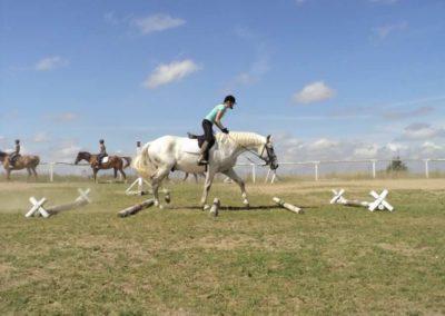 oboz-konie-2011-0175