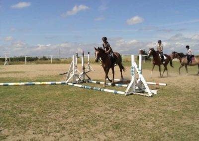 oboz-konie-2011-0176