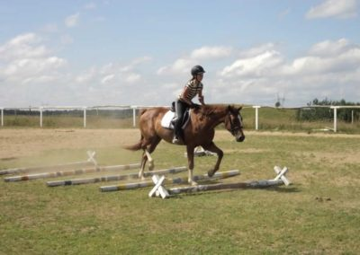 oboz-konie-2011-0177