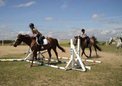 oboz-konie-2011-0178