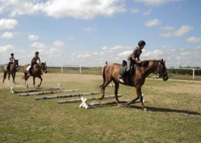 oboz-konie-2011-0179