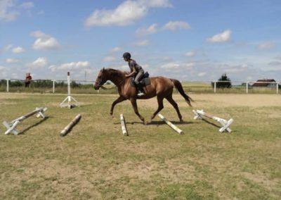 oboz-konie-2011-0180