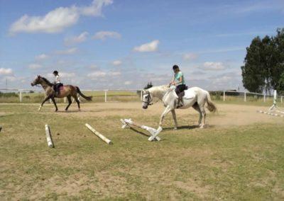 oboz-konie-2011-0181