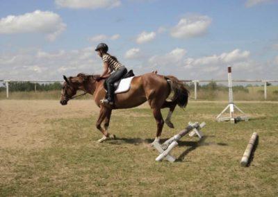 oboz-konie-2011-0182