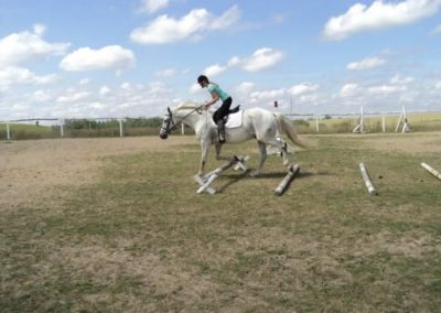 oboz-konie-2011-0186