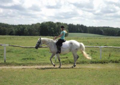 oboz-konie-2011-0189