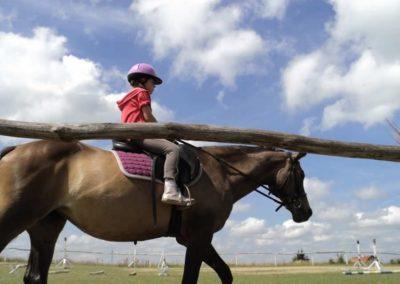 oboz-konie-2011-0192