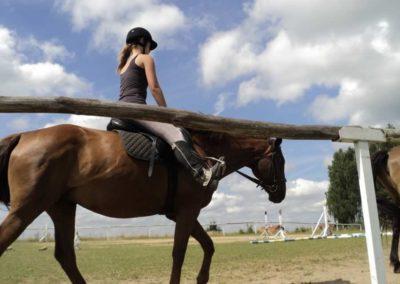 oboz-konie-2011-0193
