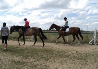 oboz-konie-2011-0198