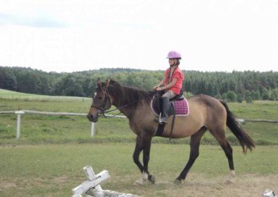 oboz-konie-2011-0199